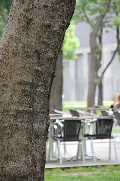 11-06-03a-istanbul-83.jpg